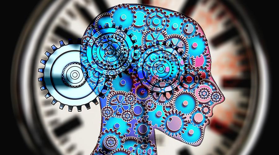 der menschliche Biorhythmus, die innere Uhr, Farbtemperatur, Licht und Biorhythmus, Zyklen, Jahreszeiten, circadianer Rhythmus, infradianer Rhythmus, ultradianer Rhythmus, LED Beleuchtung, HCL, Human Centric Lighting