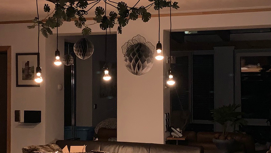 LED Lampen, LED Beleuchtung, LED Mythos, LED Wissen, FAQ LED, Mythen LED, Fakten Lampen, Fakten über LED Leuchtmittel, LED Fakten, dimmbare LED, Ambient Dimming, LED dimmbar