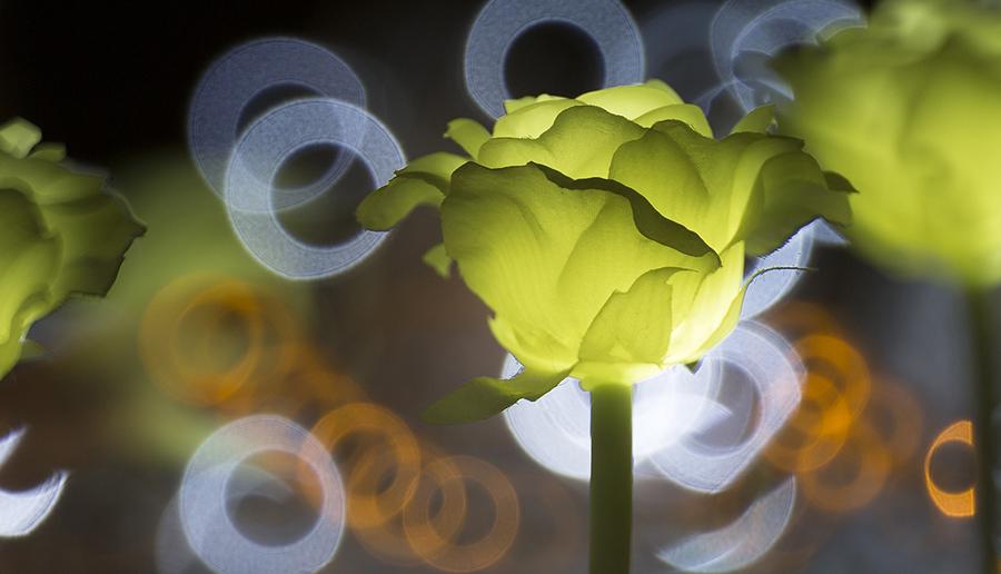LED Lampen, LED Beleuchtung, LED Mythos, LED Wissen, FAQ LED, Mythen LED, Fakten Lampen, Fakten über LED Leuchtmittel, LED Fakten, unnatürliches Licht, Led Licht natürlich
